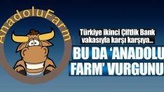 ikinci Çiftlik Bank vakası! 200 milyonluk vurgun